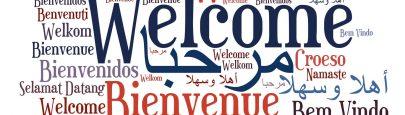 WordPress Multilingual Plugin