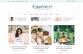 The Essence - WordPress blog theme