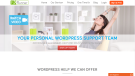 Fix Runner WordPress Support Srevice