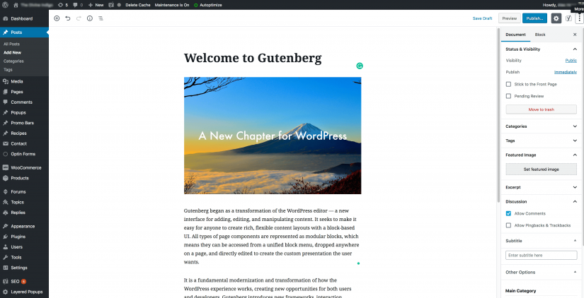 gutenberg introduction (1)